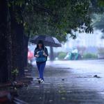 Giấc mơ thấy mưa rào vào mùa hạ cũng được xem như là điềm báo tốt lành dành cho chủ nhân của nó